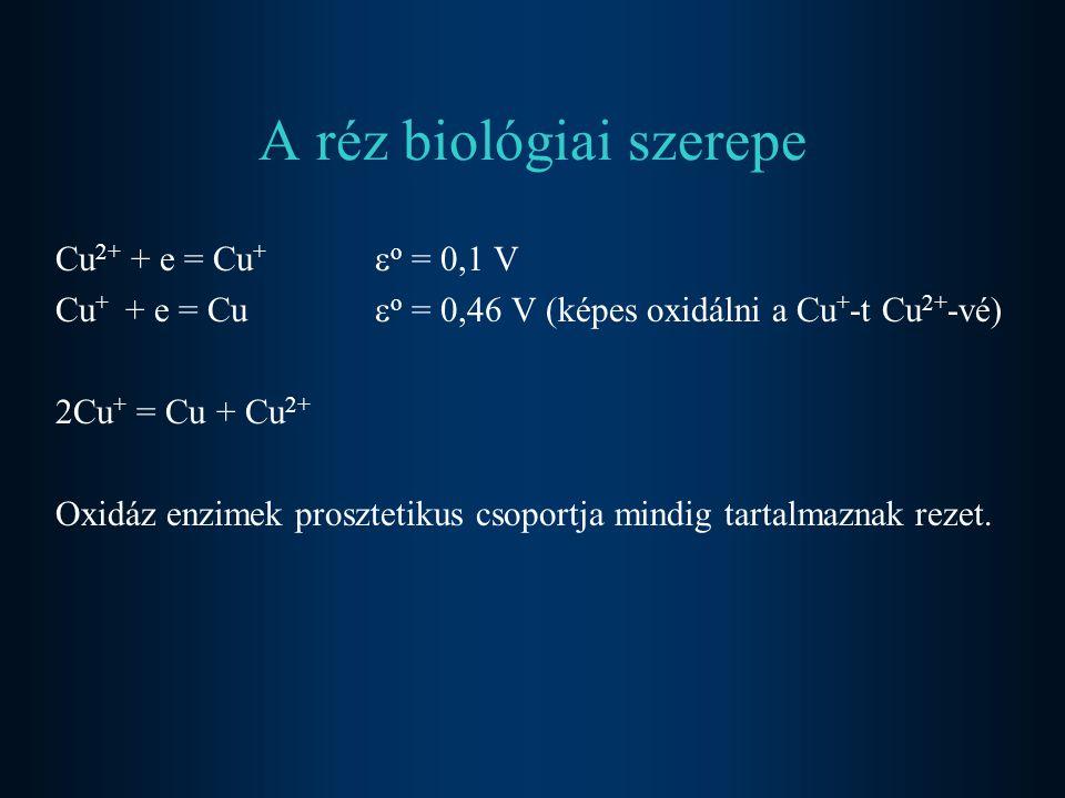 A réz biológiai szerepe Cu 2+ + e = Cu +  o = 0,1 V Cu + + e = Cu  o = 0,46 V (képes oxidálni a Cu + -t Cu 2+ -vé) 2Cu + = Cu + Cu 2+ Oxidáz enzimek