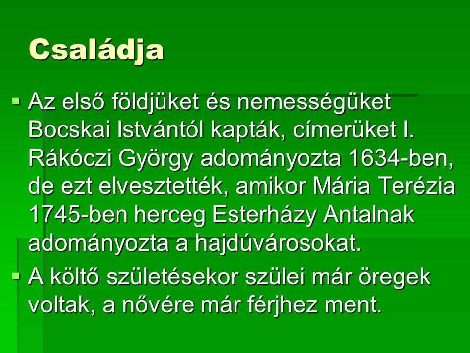 Családja AAAAz első földjüket és nemességüket Bocskai Istvántól kapták, címerüket I. Rákóczi György adományozta 1634-ben, de ezt elvesztették, ami