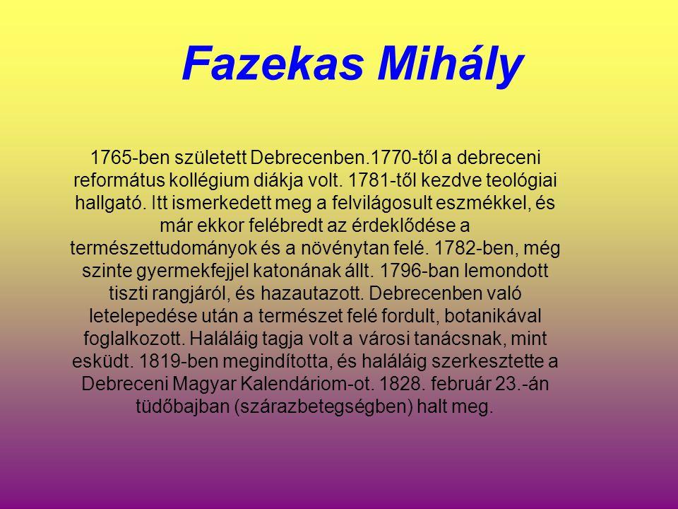 Fazekas Mihály 1765-ben született Debrecenben.1770-től a debreceni református kollégium diákja volt. 1781-től kezdve teológiai hallgató. Itt ismerkede