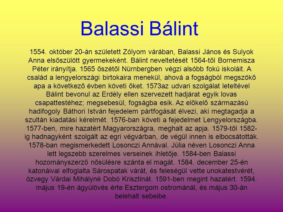 1554. október 20-án született Zólyom várában, Balassi János és Sulyok Anna elsőszülött gyermekeként. Bálint neveltetését 1564-től Bornemisza Péter irá