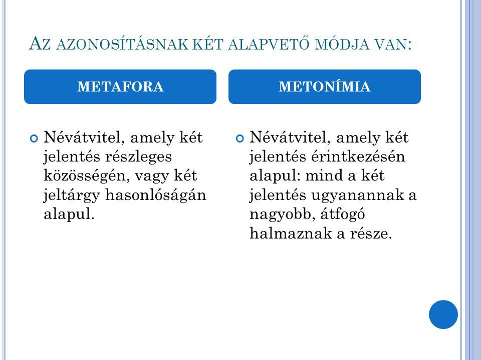 M ETAFORA PÉLDÁK GYÖKÉR főnév 1.