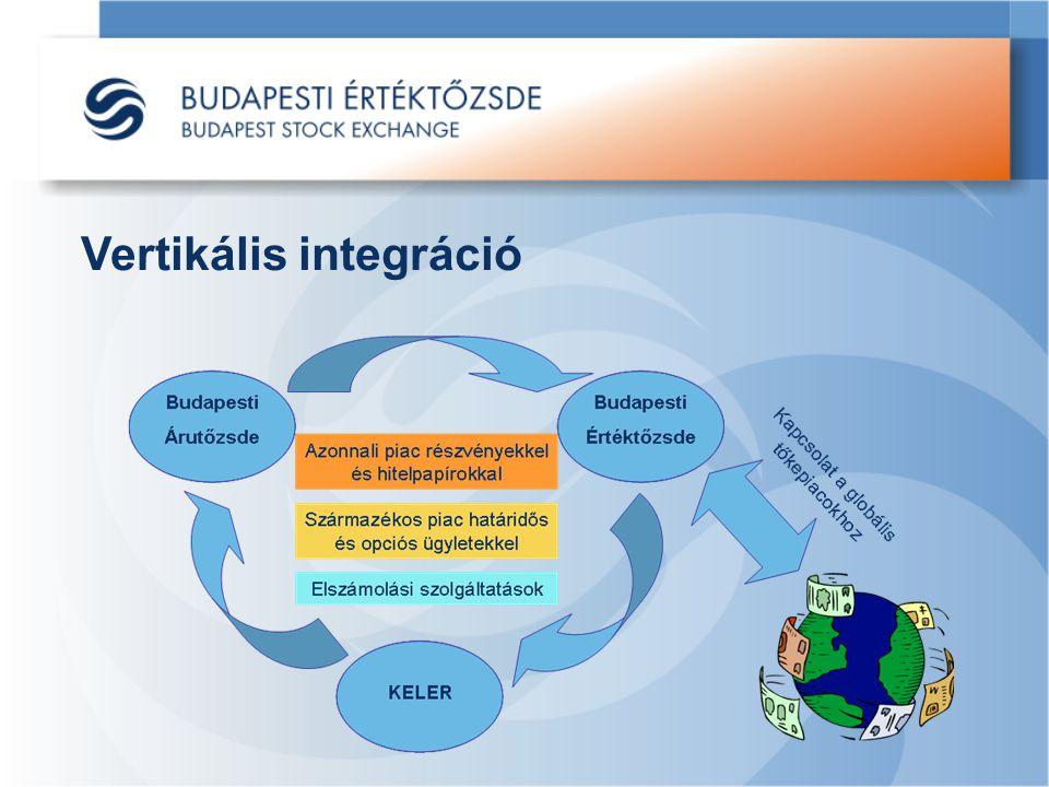 Vertikális integráció