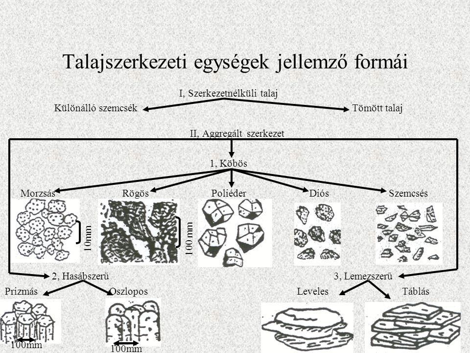 Talajszerkezeti egységek jellemző formái I, Szerkezetnélküli talaj Különálló szemcsék Tömött talaj II, Aggregált szerkezet 1, Köbös Morzsás Rögös Poli