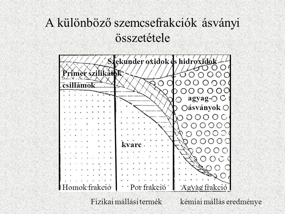 A különböző szemcsefrakciók ásványi összetétele Szekunder oxidok és hidroxidok Primer szilikátok csillámok agyag- ásványok kvarc Homok frakció Por fra