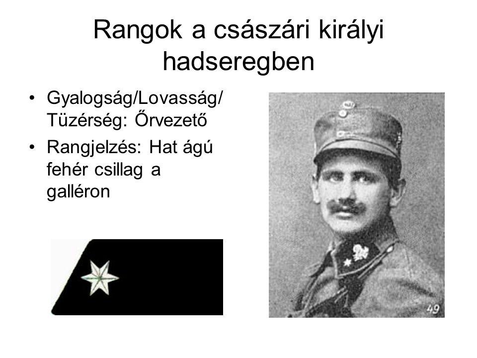 Rangok a császári királyi hadseregben Gyalogság/Lovasság/ Tüzérség: Tizedes Rangjelzés: 2 fehér hatágú csillag a galléron