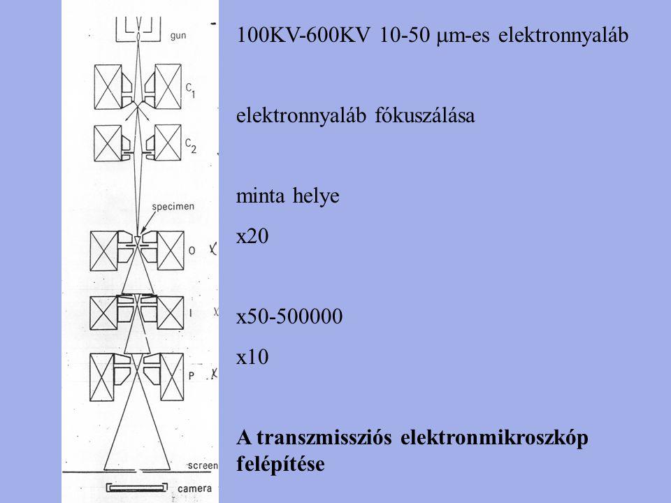 100KV-600KV 10-50  m-es elektronnyaláb elektronnyaláb fókuszálása minta helye x20 x50-500000 x10 A transzmissziós elektronmikroszkóp felépítése
