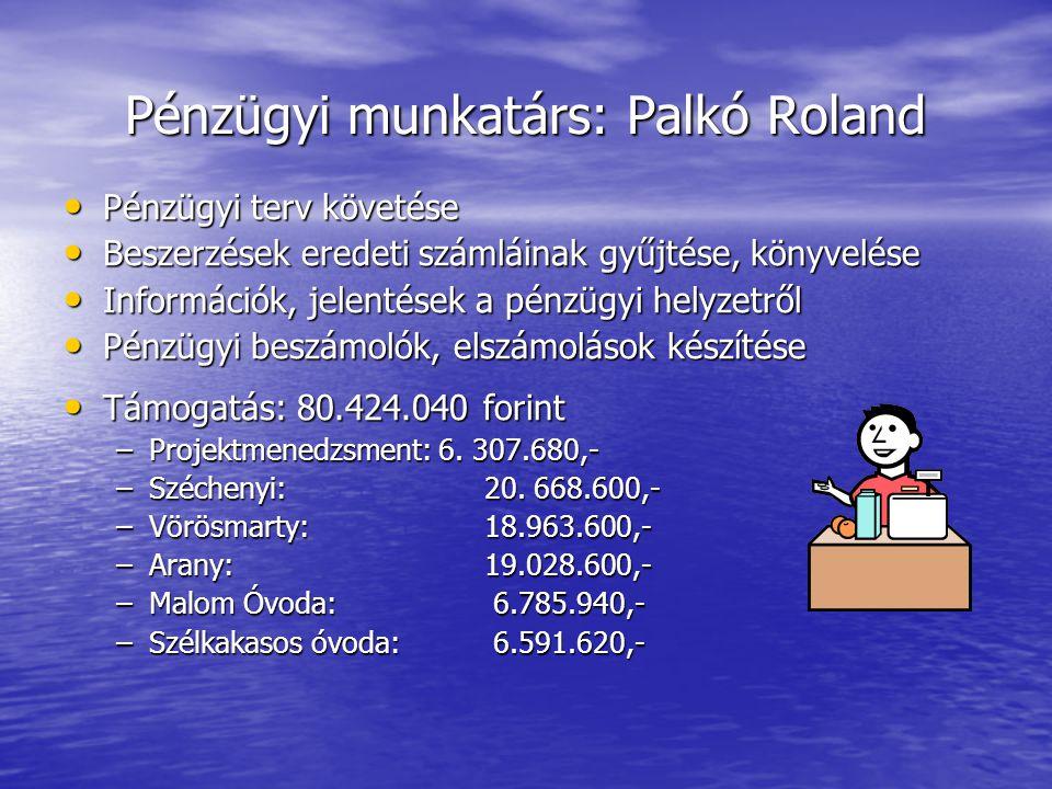 Pénzügyi munkatárs: Palkó Roland Pénzügyi terv követése Pénzügyi terv követése Beszerzések eredeti számláinak gyűjtése, könyvelése Beszerzések eredeti számláinak gyűjtése, könyvelése Információk, jelentések a pénzügyi helyzetről Információk, jelentések a pénzügyi helyzetről Pénzügyi beszámolók, elszámolások készítése Pénzügyi beszámolók, elszámolások készítése Támogatás: 80.424.040 forint Támogatás: 80.424.040 forint –Projektmenedzsment: 6.