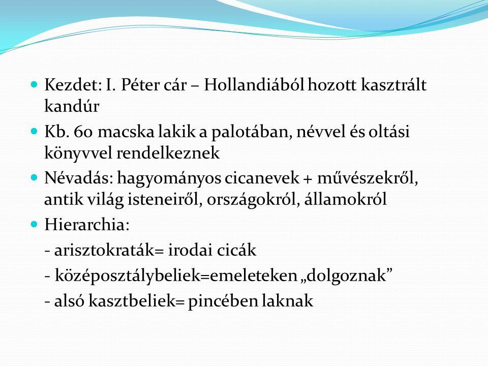 Kezdet: I. Péter cár – Hollandiából hozott kasztrált kandúr Kb. 60 macska lakik a palotában, névvel és oltási könyvvel rendelkeznek Névadás: hagyomány