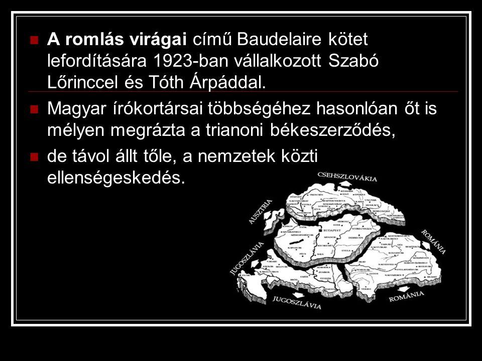 A romlás virágai című Baudelaire kötet lefordítására 1923-ban vállalkozott Szabó Lőrinccel és Tóth Árpáddal. Magyar írókortársai többségéhez hasonlóan