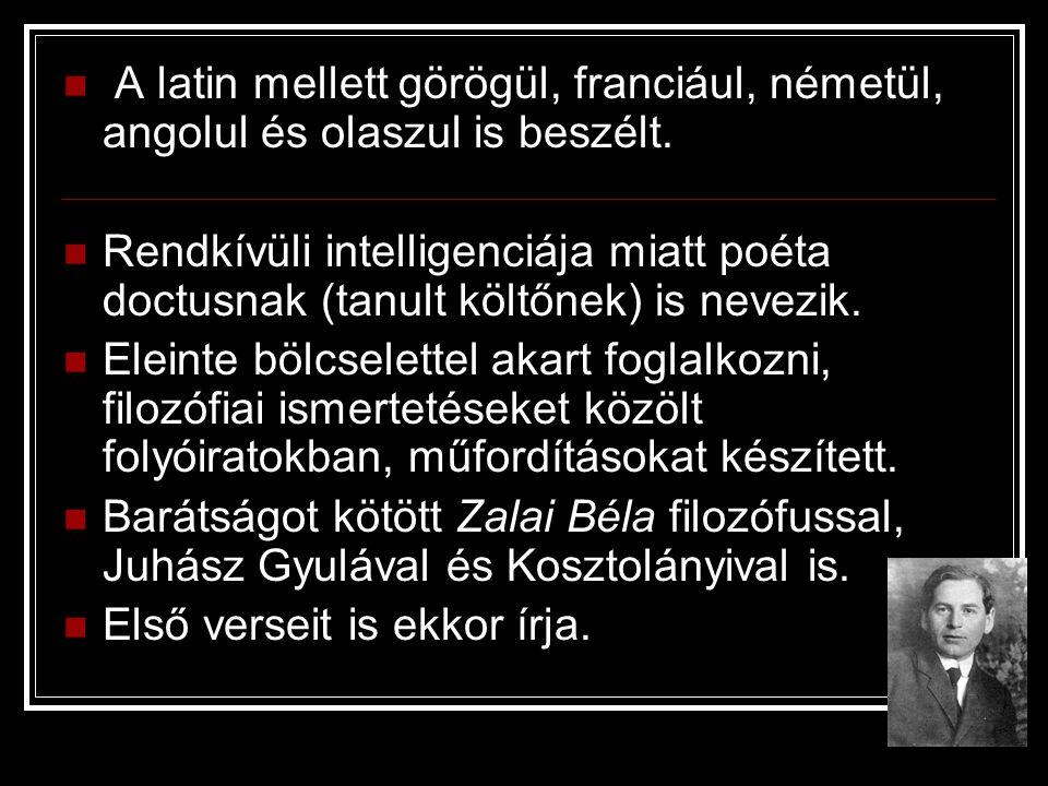 A latin mellett görögül, franciául, németül, angolul és olaszul is beszélt. Rendkívüli intelligenciája miatt poéta doctusnak (tanult költőnek) is neve