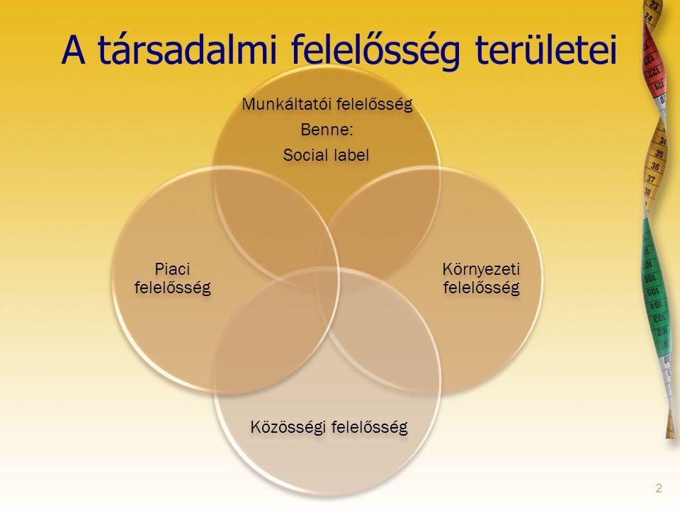 2 A társadalmi felelősség területei Munkáltatói felelősség Benne: Social label Környezeti felelősség Közösségi felelősség Piaci felelősség