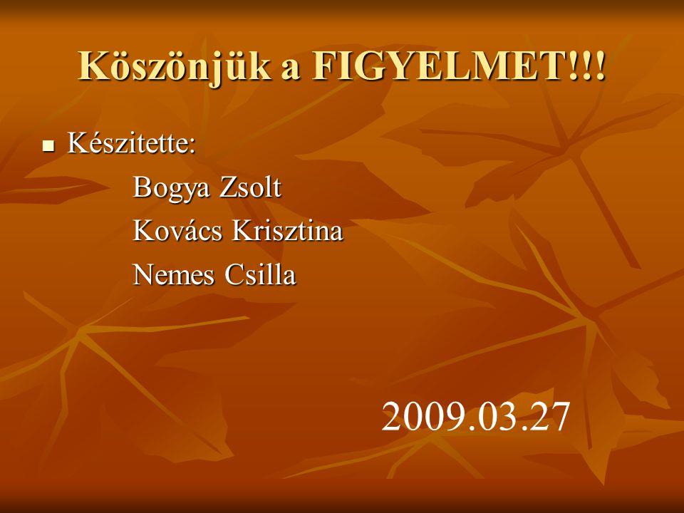 Köszönjük a FIGYELMET!!! Készitette: Készitette: Bogya Zsolt Bogya Zsolt Kovács Krisztina Kovács Krisztina Nemes Csilla Nemes Csilla 2009.03.27