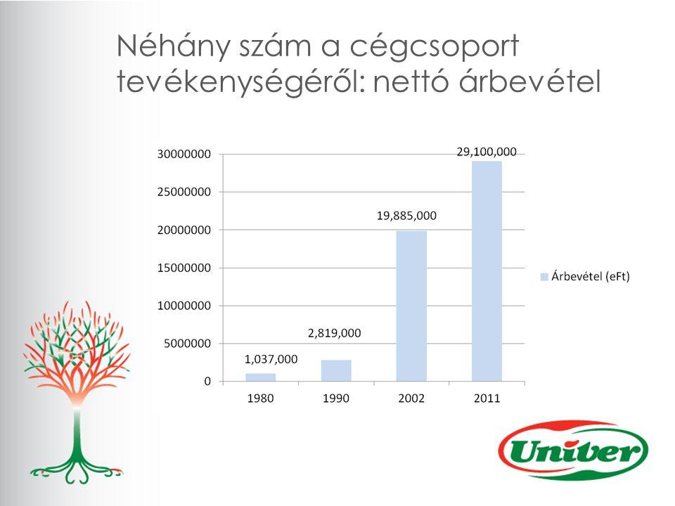 Néhány szám a cégcsoport tevékenységéről: nettó árbevétel
