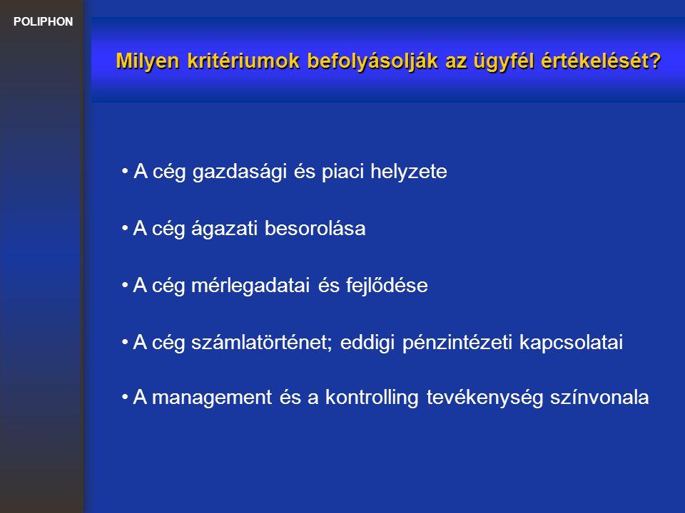 POLIPHON Milyen kritériumok befolyásolják az ügyfél értékelését? A cég gazdasági és piaci helyzete A cég ágazati besorolása A cég mérlegadatai és fejl