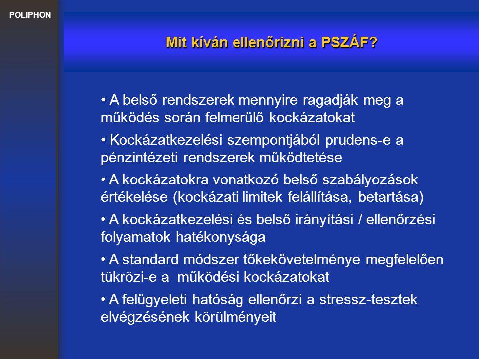POLIPHON Mit kíván ellenőrizni a PSZÁF? A kockázatkezelési és belső irányítási / ellenőrzési folyamatok hatékonysága A belső rendszerek mennyire ragad