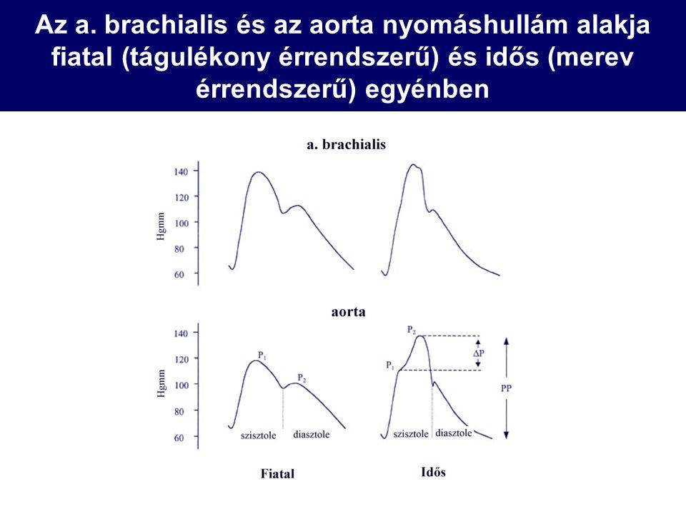 Az a. brachialis és az aorta nyomáshullám alakja fiatal (tágulékony érrendszerű) és idős (merev érrendszerű) egyénben