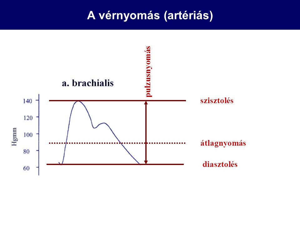 A vérnyomás (artériás) szisztolés pulzusnyomás átlagnyomás diasztolés