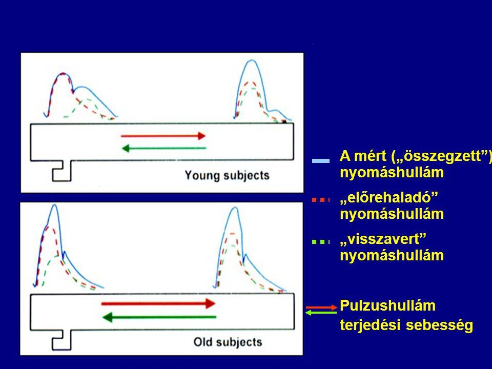 Vázlat A vitális paraméterek A vérnyomás mérése A perifériás pulzus vizsgálata