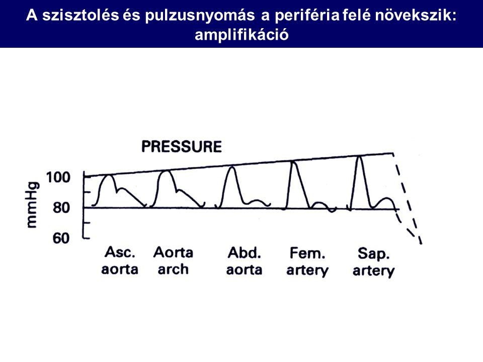 Carotis-femoralis pulzushullám terjedési sebesség PWV Egyszerűen mérhető Közvetlen jelzője az elasztikus erek tágulékonyságának Befolyásolja: vérnyomás Norm: 6-12 m/s (?) tt L