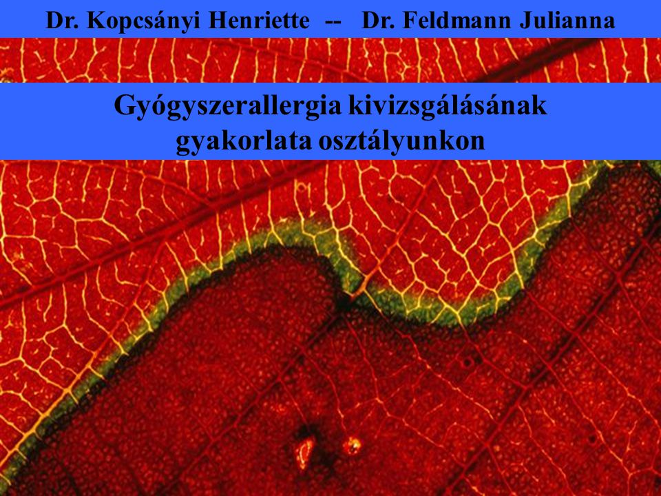Dr. Kopcsányi Henriette -- Dr. Feldmann Julianna Gyógyszerallergia kivizsgálásának gyakorlata osztályunkon