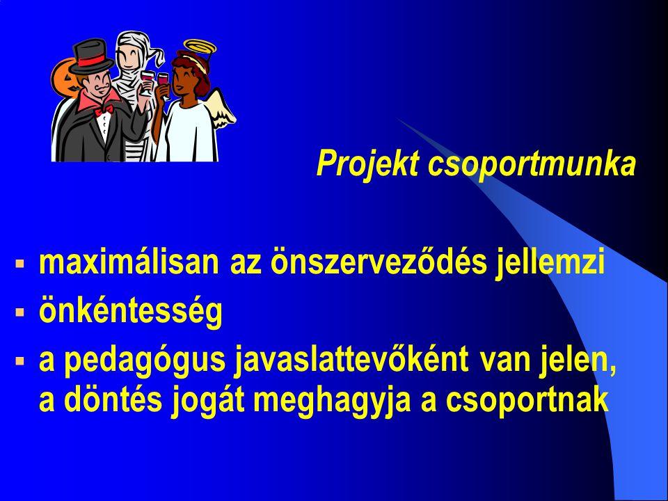 Projekt csoportmunka  maximálisan az önszerveződés jellemzi  önkéntesség  a pedagógus javaslattevőként van jelen, a döntés jogát meghagyja a csoportnak
