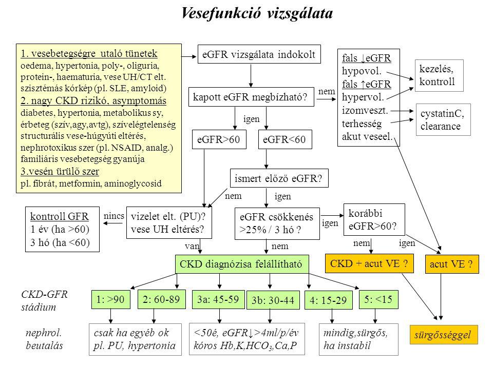 eGFR vizsgálata indokolt eGFR<60 kapott eGFR megbízható? fals ↓eGFR hypovol. fals ↑eGFR hypervol. izomveszt. terhesség akut veseel. korábbi eGFR>60? 5