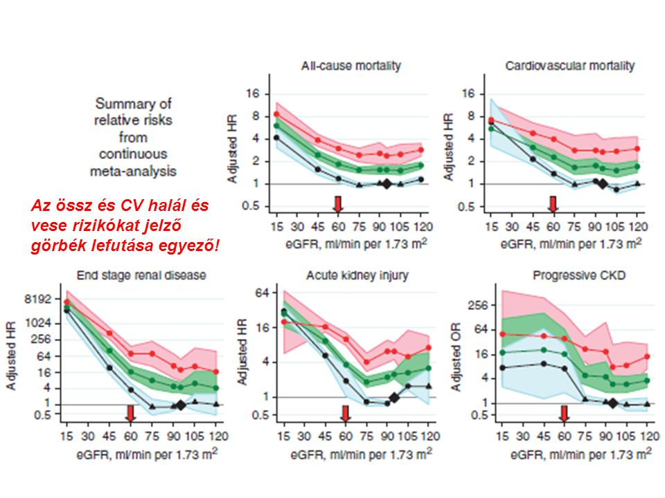Az össz és CV halál és vese rizikókat jelző görbék lefutása egyező!