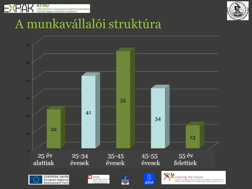 A munkavállalói struktúra 25 év 25-3435-45 45-55 55 év alattiak évesek évesek évesek felettiek