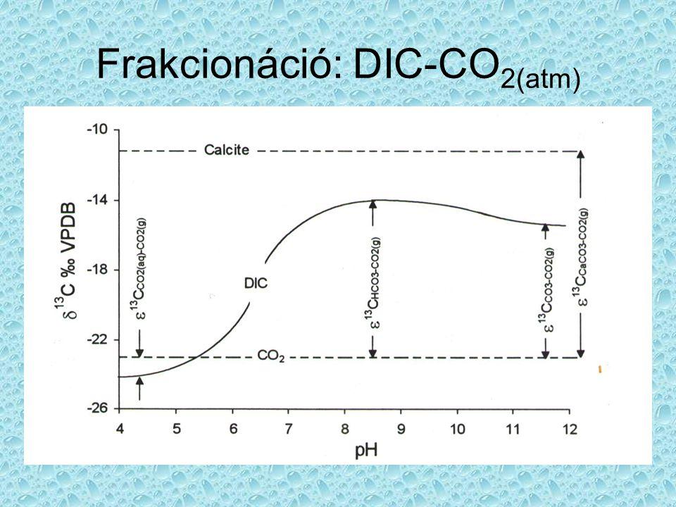 Frakcionáció: DIC-CO 2(atm)