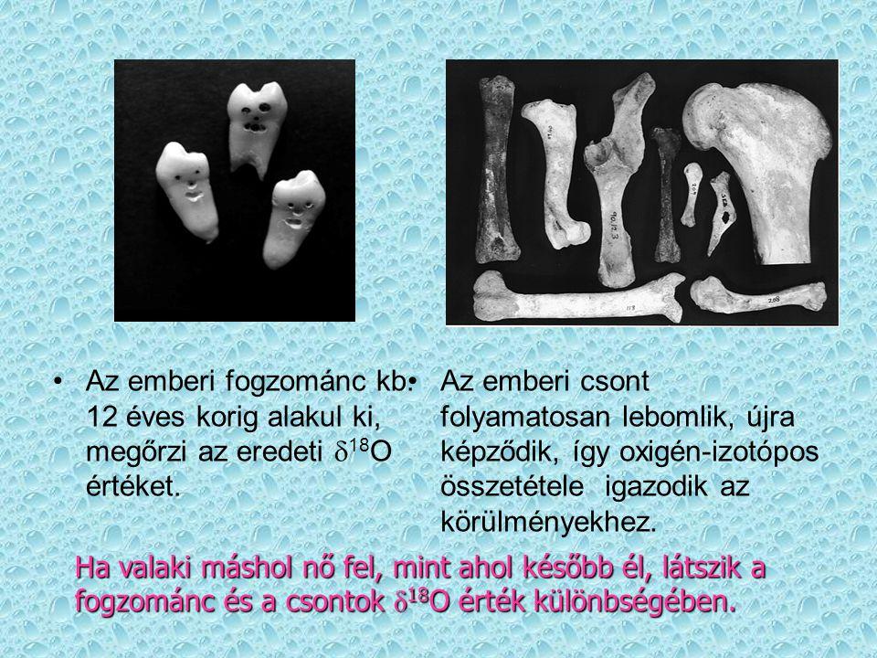 Az emberi fogzománc kb. 12 éves korig alakul ki, megőrzi az eredeti  18 O értéket. Az emberi csont folyamatosan lebomlik, újra képződik, így oxigén-i