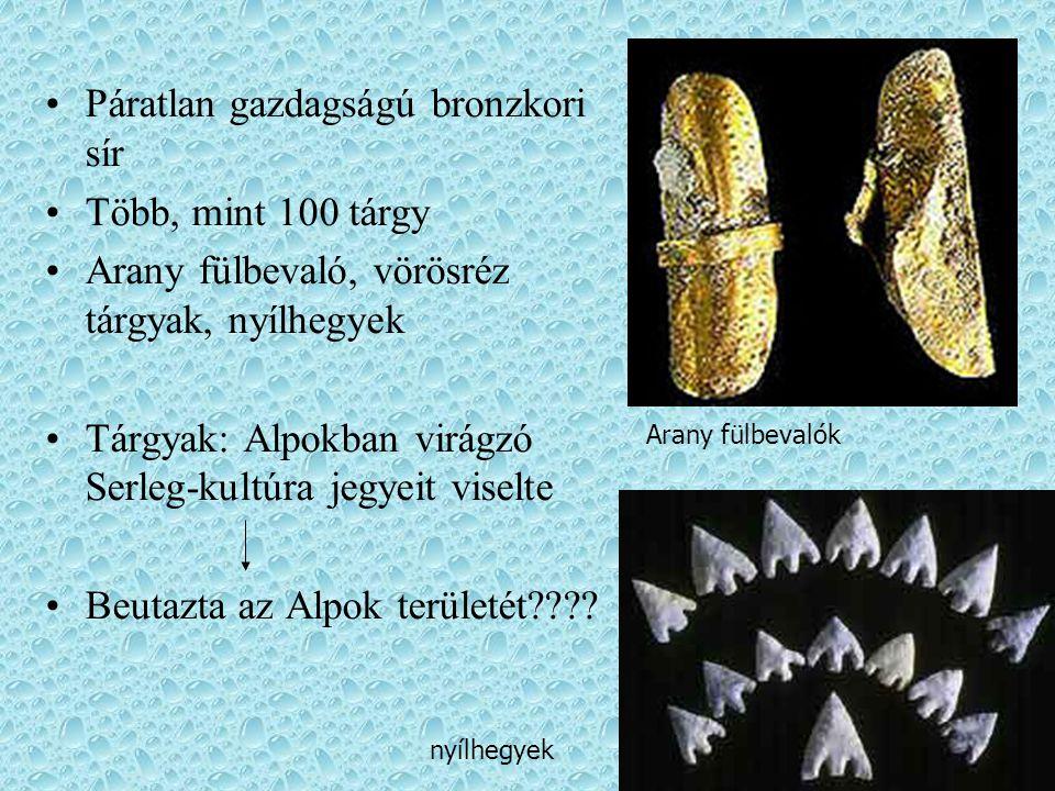 Páratlan gazdagságú bronzkori sír Több, mint 100 tárgy Arany fülbevaló, vörösréz tárgyak, nyílhegyek Tárgyak: Alpokban virágzó Serleg-kultúra jegyeit
