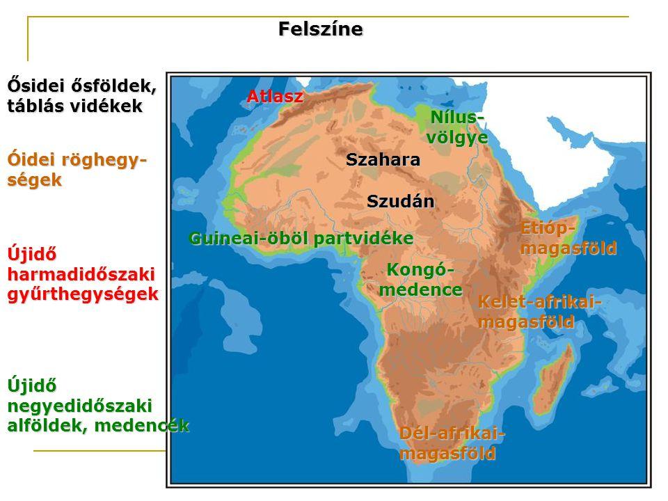 Felszíne Ősidei ősföldek, táblás vidékek Szahara Szudán Óidei röghegy- ségek Etióp- magasföld Kelet-afrikai- magasföld Dél-afrikai- magasföld Újidő ha