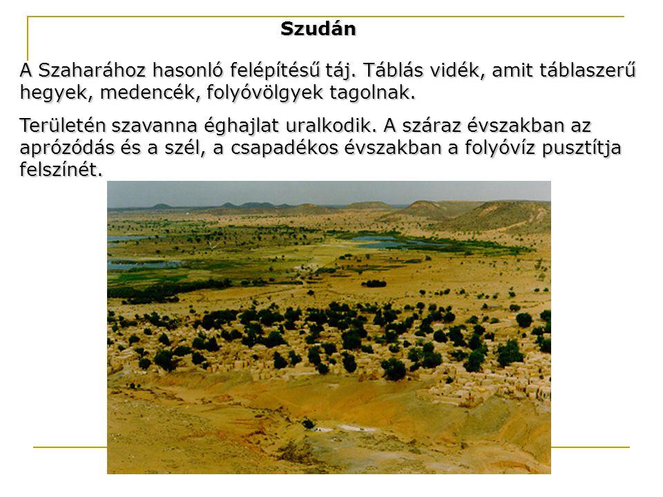 Szudán A Szaharához hasonló felépítésű táj. Táblás vidék, amit táblaszerű hegyek, medencék, folyóvölgyek tagolnak. Területén szavanna éghajlat uralkod