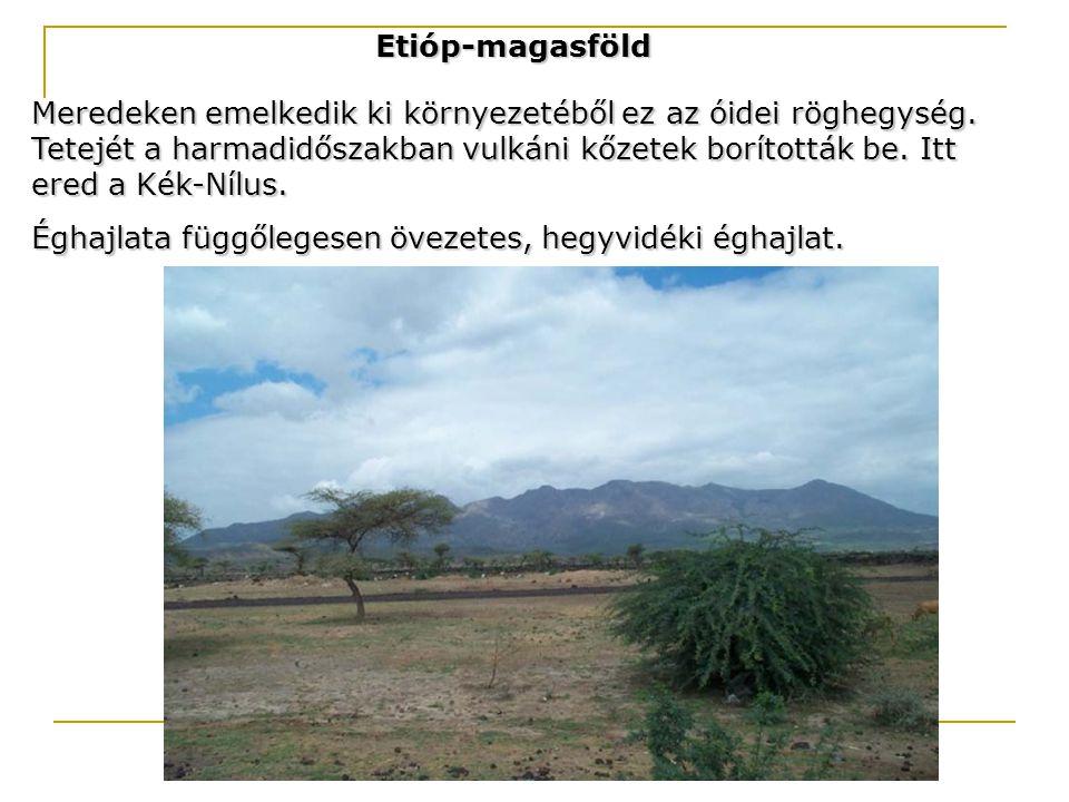 Etióp-magasföld Meredeken emelkedik ki környezetéből ez az óidei röghegység. Tetejét a harmadidőszakban vulkáni kőzetek borították be. Itt ered a Kék-
