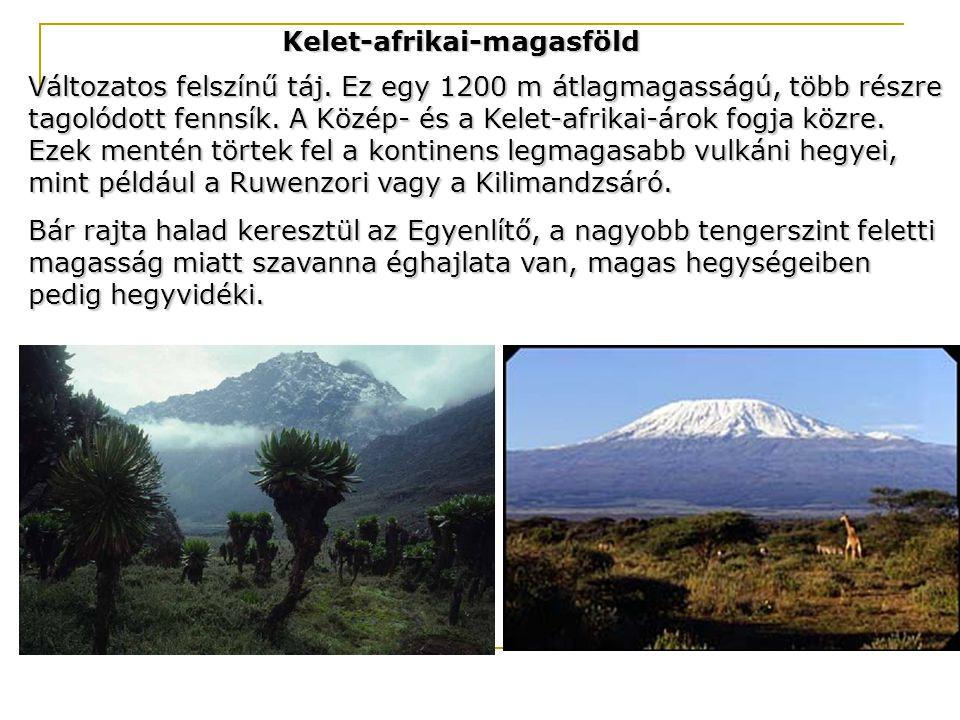 Kelet-afrikai-magasföld Változatos felszínű táj. Ez egy 1200 m átlagmagasságú, több részre tagolódott fennsík. A Közép- és a Kelet-afrikai-árok fogja