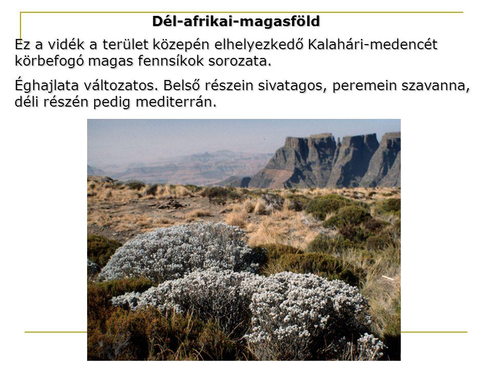 Dél-afrikai-magasföld Ez a vidék a terület közepén elhelyezkedő Kalahári-medencét körbefogó magas fennsíkok sorozata. Éghajlata változatos. Belső rész