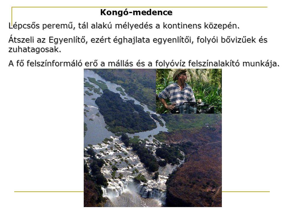 Kongó-medence Lépcsős peremű, tál alakú mélyedés a kontinens közepén. Átszeli az Egyenlítő, ezért éghajlata egyenlítői, folyói bővizűek és zuhatagosak