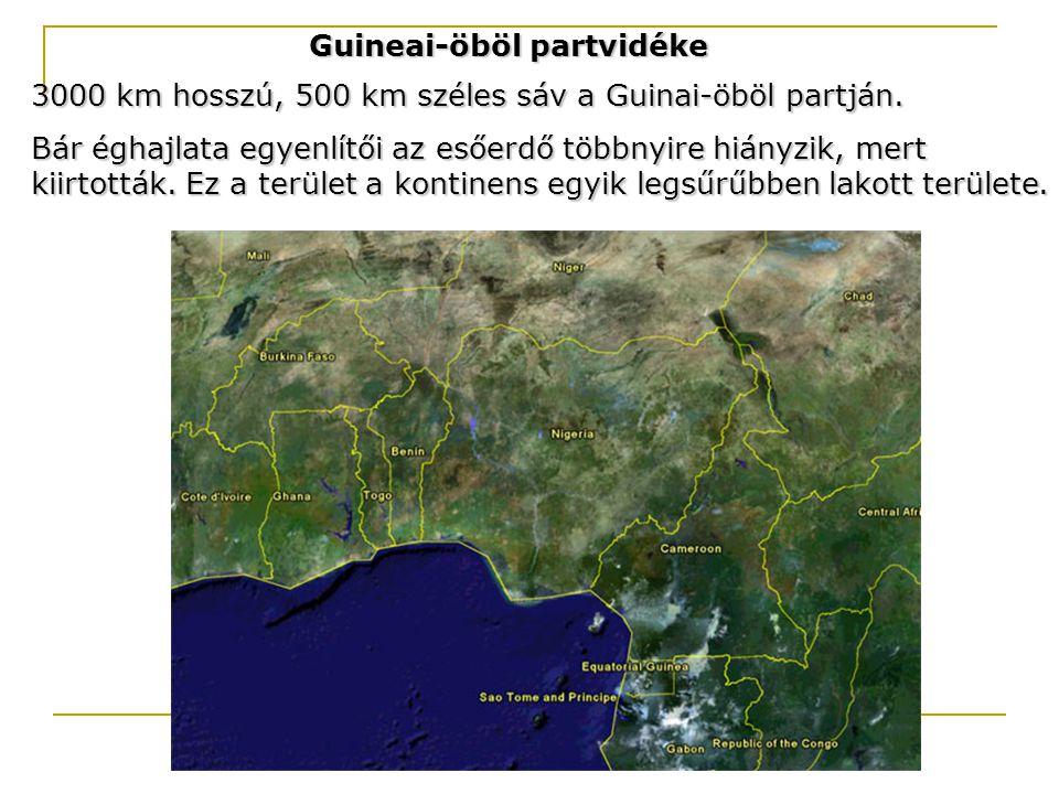 Guineai-öböl partvidéke 3000 km hosszú, 500 km széles sáv a Guinai-öböl partján. Bár éghajlata egyenlítői az esőerdő többnyire hiányzik, mert kiirtott