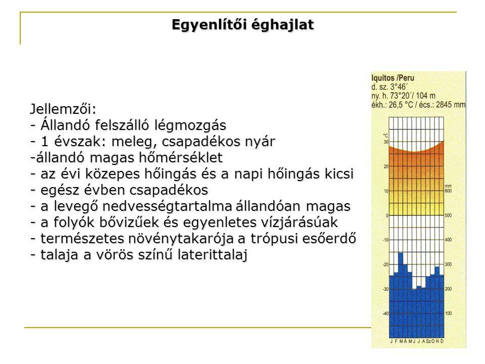 Egyenlítői éghajlat Jellemzői: - Állandó felszálló légmozgás - 1 évszak: meleg, csapadékos nyár -állandó magas hőmérséklet - az évi közepes hőingás és