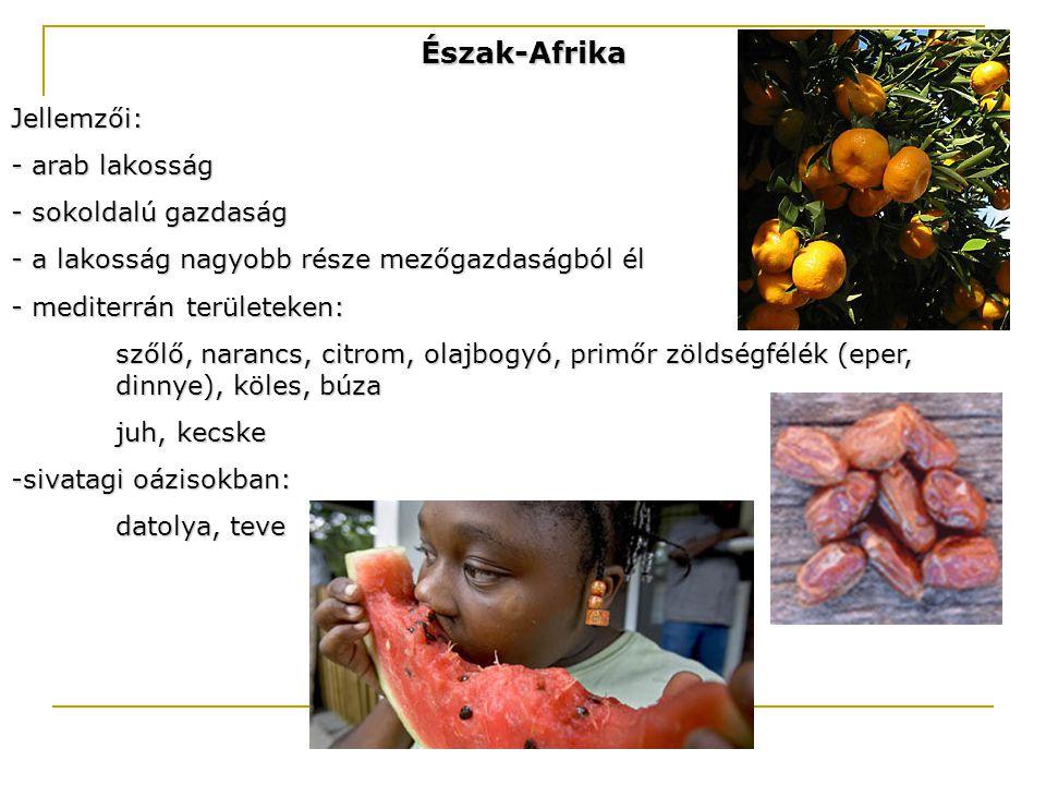 Észak-Afrika Jellemzői: - arab lakosság - sokoldalú gazdaság - a lakosság nagyobb része mezőgazdaságból él - mediterrán területeken: szőlő, narancs, c