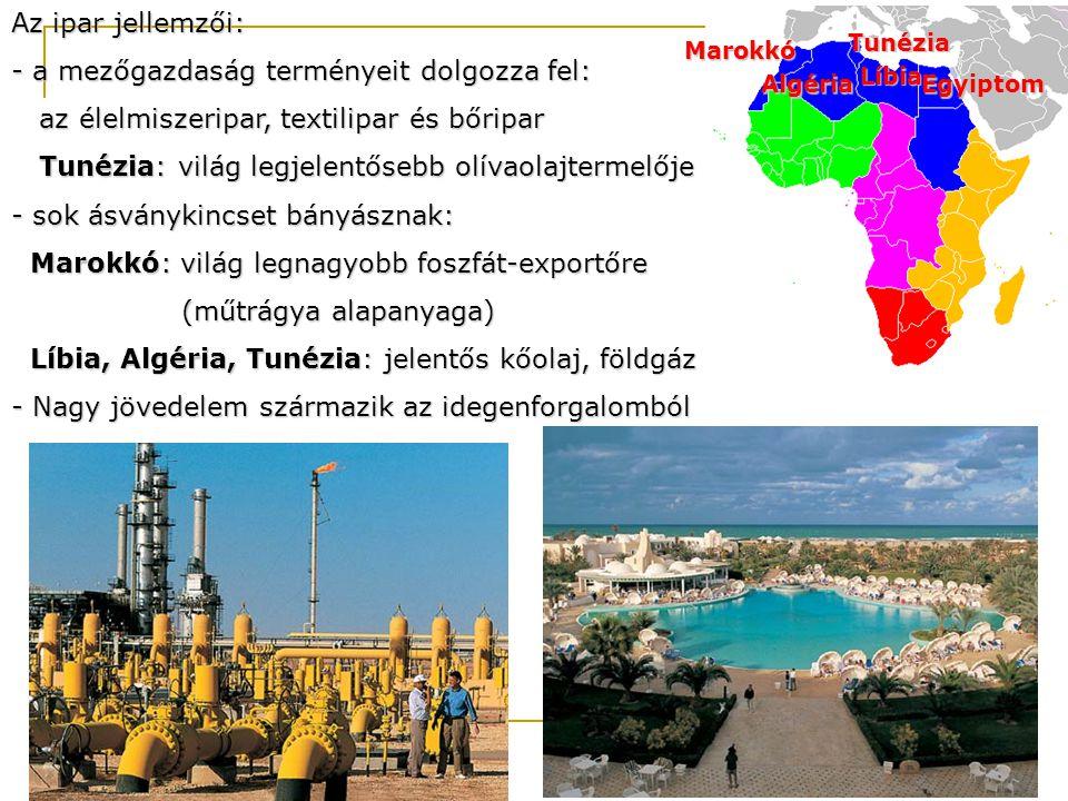 Az ipar jellemzői: - a mezőgazdaság terményeit dolgozza fel: az élelmiszeripar, textilipar és bőripar az élelmiszeripar, textilipar és bőripar Tunézia