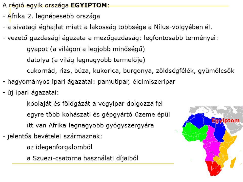 A régió egyik országa EGYIPTOM: - Afrika 2. legnépesebb országa - a sivatagi éghajlat miatt a lakosság többsége a Nílus-völgyében él. - vezető gazdasá