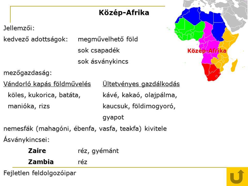 Közép-Afrika Közép-Afrika Jellemzői: kedvező adottságok: megművelhető föld sok csapadék sok ásványkincs mezőgazdaság: Vándorló kapás földművelésÜltetv