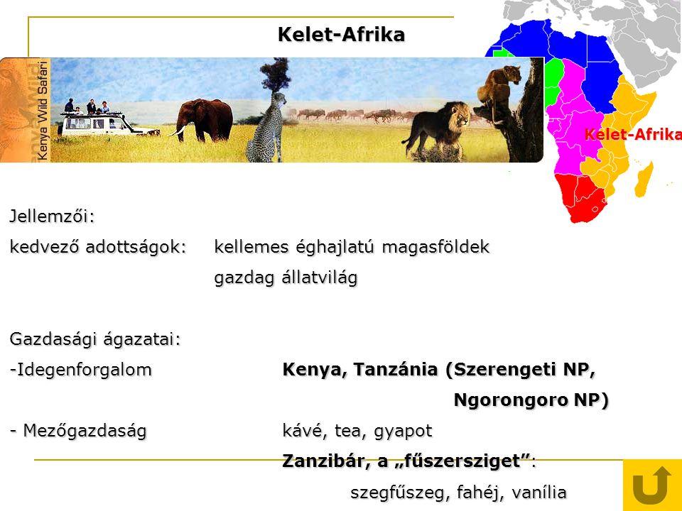 Kelet-Afrika Kelet-Afrika Jellemzői: kedvező adottságok: kellemes éghajlatú magasföldek gazdag állatvilág Gazdasági ágazatai: -IdegenforgalomKenya, Ta