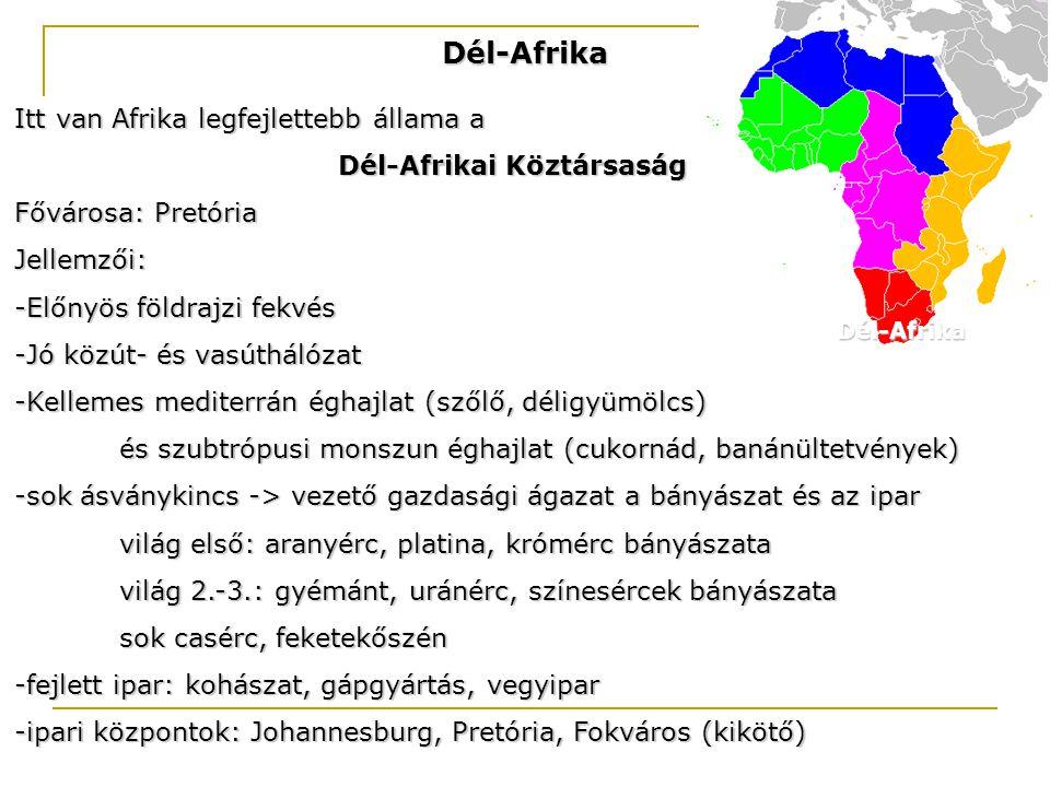 Dél-Afrika Dél-Afrika Itt van Afrika legfejlettebb állama a Dél-Afrikai Köztársaság Fővárosa: Pretória Jellemzői: -Előnyös földrajzi fekvés -Jó közút-