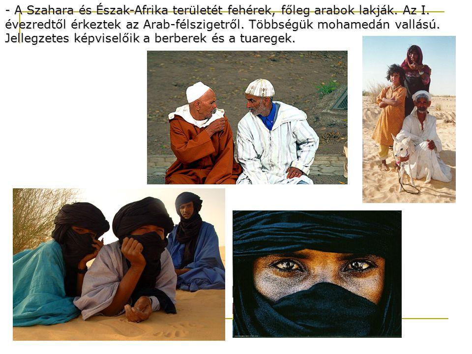 - A Szahara és Észak-Afrika területét fehérek, főleg arabok lakják. Az I. évezredtől érkeztek az Arab-félszigetről. Többségük mohamedán vallású. Jelle