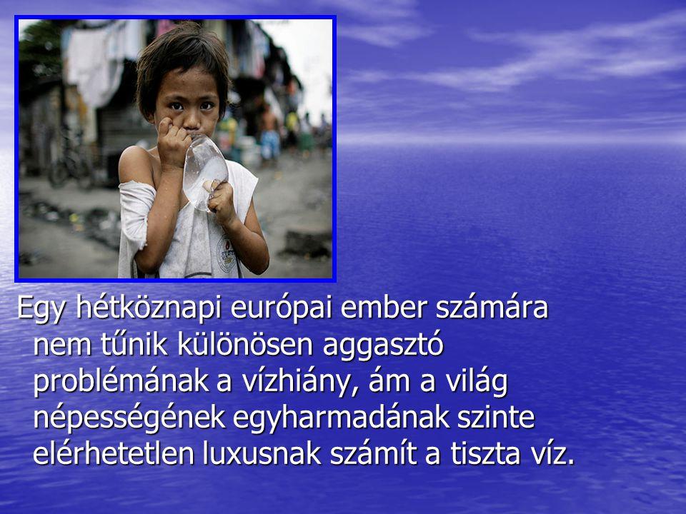 Egy hétköznapi európai ember számára nem tűnik különösen aggasztó problémának a vízhiány, ám a világ népességének egyharmadának szinte elérhetetlen lu