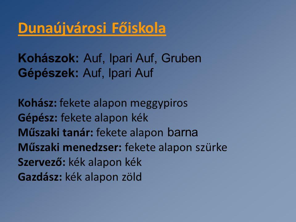 Dunaújvárosi Főiskola Kohászok: Auf, Ipari Auf, Gruben Gépészek: Auf, Ipari Auf Kohász: fekete alapon meggypiros Gépész: fekete alapon kék Műszaki tan