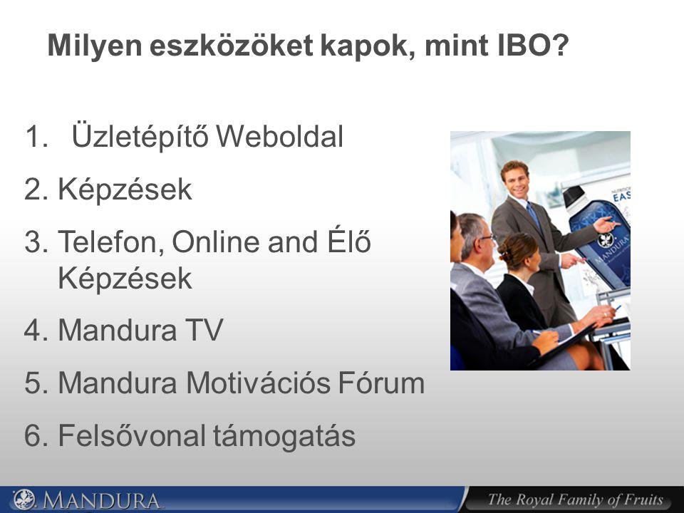 Milyen eszközöket kapok, mint IBO.1. Üzletépítő Weboldal 2.
