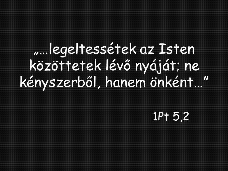 """""""…legeltessétek az Isten közöttetek lévő nyáját; ne kényszerből, hanem önként…"""" 1Pt 5,2"""